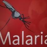 Maliarija parsivežama iš užsienio šalių